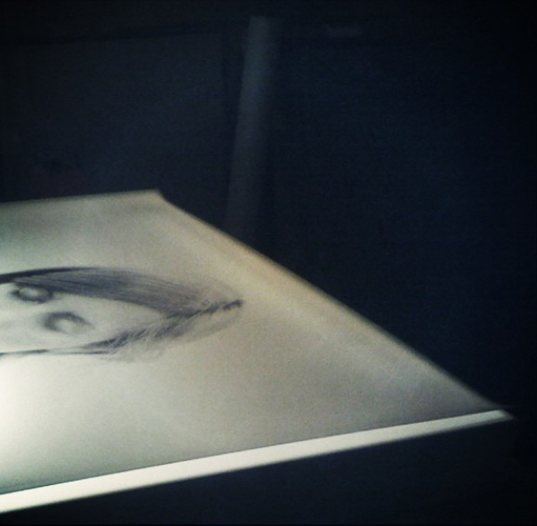Detail: The Breath Collection [Lightbox with duratran print, 841x1189mm], 2011