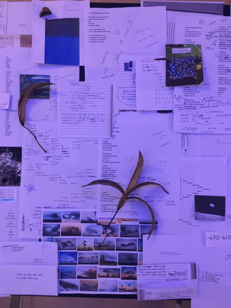 Studio process shot: Rationalising a stepping away from rationality, 2019